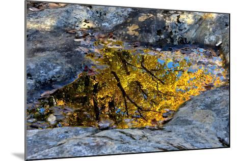 Autumn Colors Reflected in Pools of Water on a Rocky River Bank-Robbie George-Mounted Photographic Print