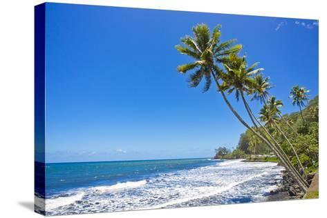Tall, Thin Palm Trees Reaching Out to Sea on the Coast of Tahiti-Mike Theiss-Stretched Canvas Print