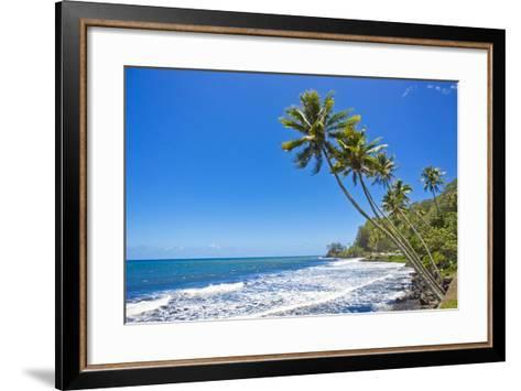 Tall, Thin Palm Trees Reaching Out to Sea on the Coast of Tahiti-Mike Theiss-Framed Art Print