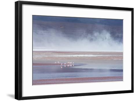 Salt Dust Shrouds James' Flamingos Foraging in Laguna Colorada-Alex Saberi-Framed Art Print