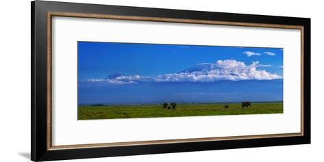 A Herd of African Elephants in a Grassland Landscape with Mount Kilimanjaro in the Distance-Babak Tafreshi-Framed Art Print
