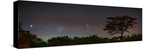 Bright Star Canopus, Large and Small Magellanic Clouds, Red and Green Airglow over Acacia Trees-Babak Tafreshi-Stretched Canvas Print