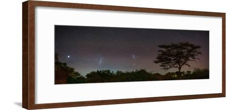 Bright Star Canopus, Large and Small Magellanic Clouds, Red and Green Airglow over Acacia Trees-Babak Tafreshi-Framed Art Print