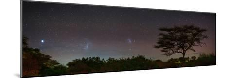 Bright Star Canopus, Large and Small Magellanic Clouds, Red and Green Airglow over Acacia Trees-Babak Tafreshi-Mounted Photographic Print
