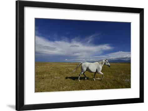 A Horse on a Ranch Near Mosca-Raul Touzon-Framed Art Print