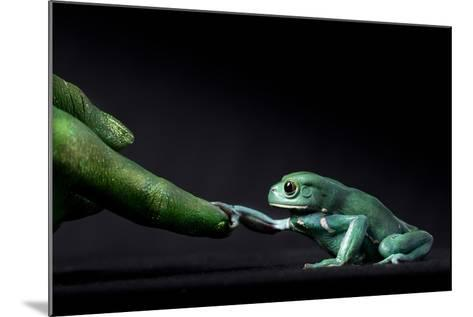 A Waxy Monkey Frog, Phyllomedusa Sauvagii, Reaches Out to Grab a Finger Painted Green-Robin Moore-Mounted Photographic Print