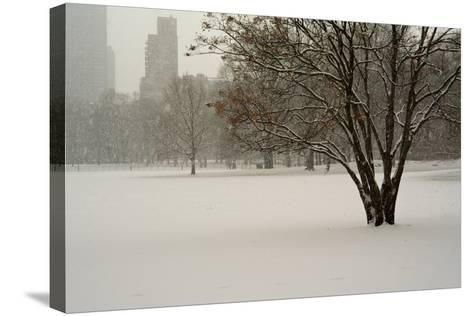The Sheep Meadow in Central Park During a Blizzard-Kike Calvo-Stretched Canvas Print