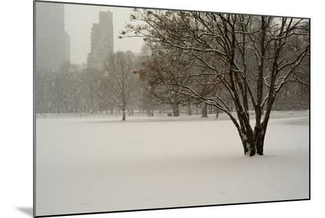 The Sheep Meadow in Central Park During a Blizzard-Kike Calvo-Mounted Photographic Print