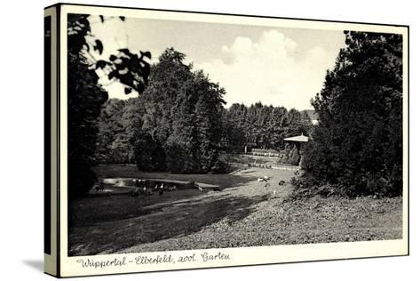 Wuppertal Elberfeld, Partie Im Zoologischen Garten--Stretched Canvas Print