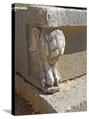 Winged Lion's Foot, Letoon, Turkey--Stretched Canvas Print