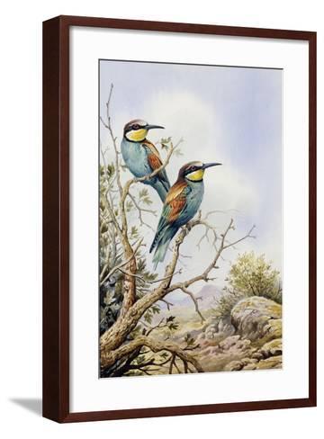 Bee-Eaters-Carl Donner-Framed Art Print