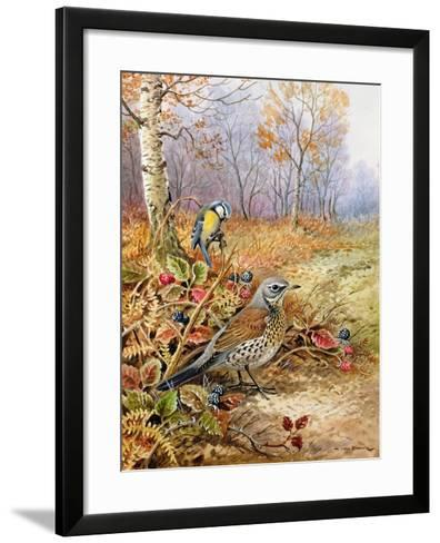 Fieldfare and Blue Tit-Carl Donner-Framed Art Print