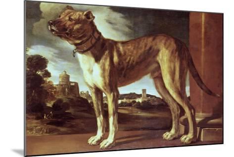 Portrait of a Dog-Guglielmo Ciardi-Mounted Giclee Print