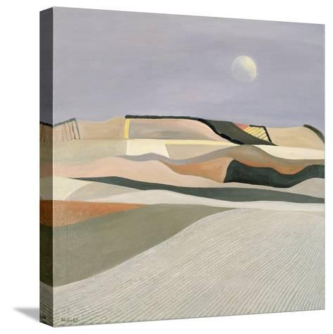 Latent Summer Heat-Liam Hanley-Stretched Canvas Print