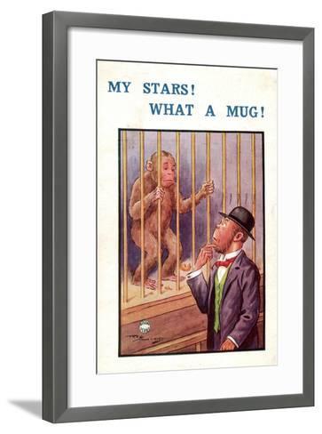 K?nstler Affe Hinter Gittern, My Stars! What a Mug!, Mann Mit Schwarzen Hut--Framed Art Print