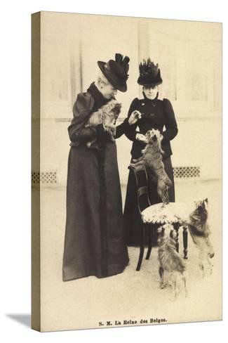 S.M. La Reine Des Belges, Yorkshire Terrier--Stretched Canvas Print