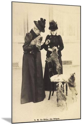 S.M. La Reine Des Belges, Yorkshire Terrier--Mounted Giclee Print