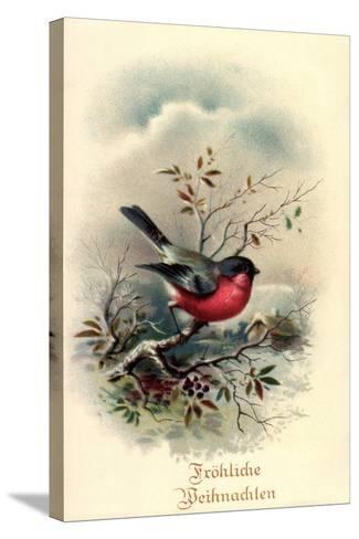 Fr?hliche Weihnachten, Rotkehlchen, Erithacus Rubecula--Stretched Canvas Print
