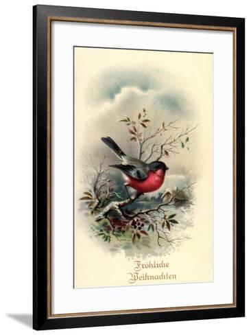 Fr?hliche Weihnachten, Rotkehlchen, Erithacus Rubecula--Framed Art Print