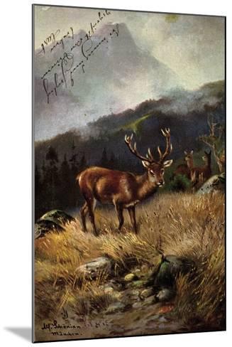 K?nstler Sch?nian, Alfred, Rehe Im Wald, Geweih, Berge--Mounted Giclee Print