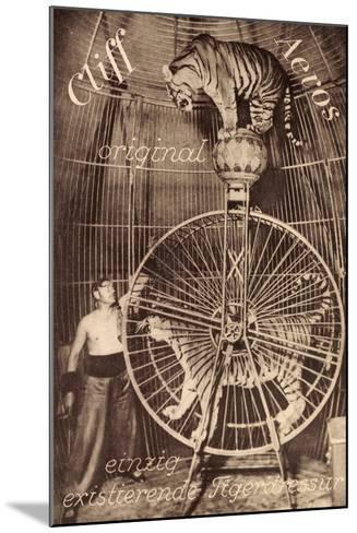 Cliff Aeros, Tigerdressur, Zirkusk?nstler, Laufrad, Raubkatzen--Mounted Giclee Print
