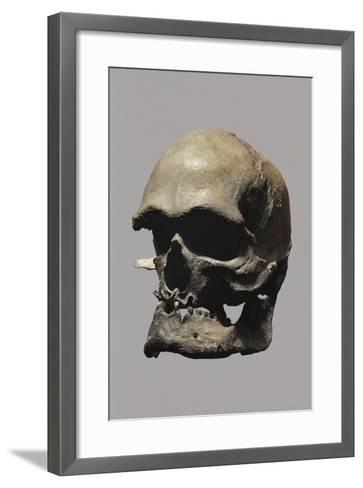 Cro-Magnon Type Skull of Homo Sapiens--Framed Art Print