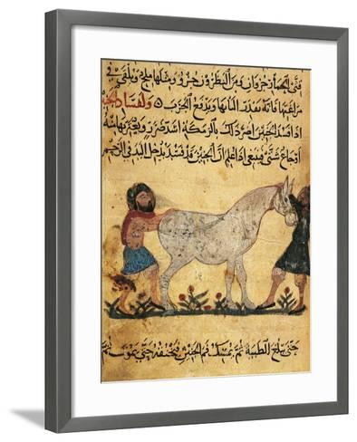 A Man Assisting a Mare Giving Birth to a Foal, Miniature from a Treatise on Horses--Framed Art Print