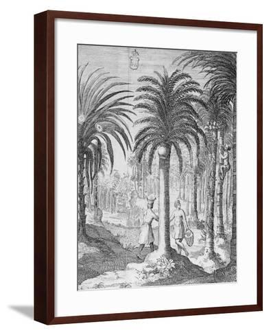 Bethel and Arek Plants, Whose Leaves and Nuts are Chewed by Indians, Asia--Framed Art Print