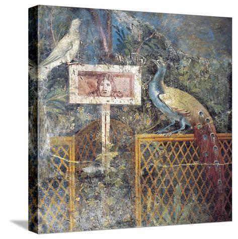 Ancient Roman Fresco with Birds and Tragic Theatre Mask--Stretched Canvas Print