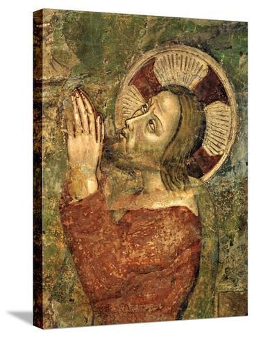 Jesus Praying in Garden--Stretched Canvas Print