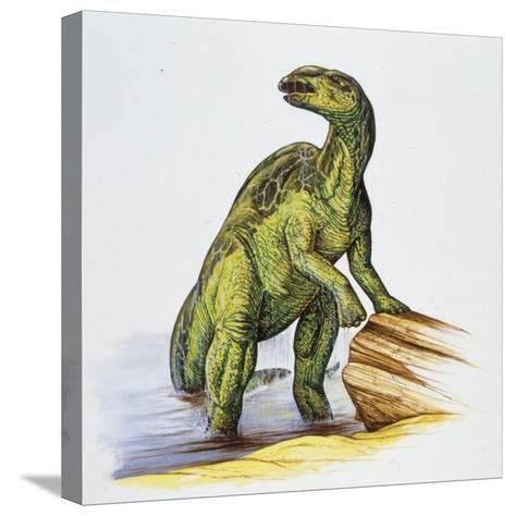 Illustration of Anatotitan by Tree Log--Stretched Canvas Print
