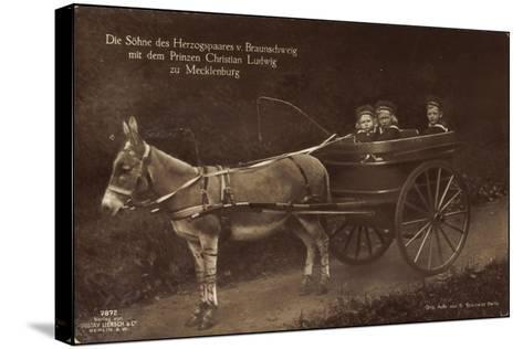 Prinzen Von Braunschweig, Prinz Christian L., Esel--Stretched Canvas Print