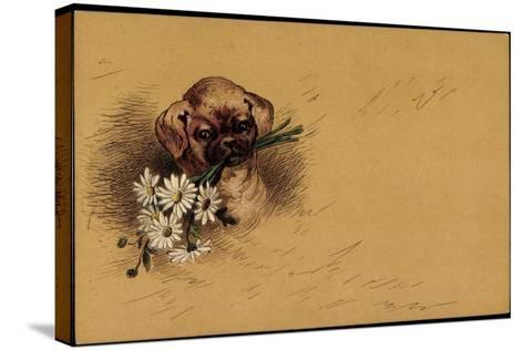 K?nstler Litho Kleiner Hundewelpe Mit Blumenstrau?--Stretched Canvas Print