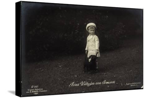 Junger Prinz Wilhelm Von Preußen Mit Dackel, Photochemie 2127--Stretched Canvas Print