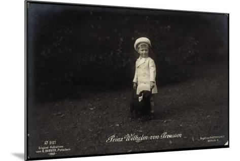Junger Prinz Wilhelm Von Preußen Mit Dackel, Photochemie 2127--Mounted Giclee Print