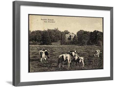 Naarden Bussum Nordholland, Kühe Auf Der Wiese, Huize Flevo Rama--Framed Art Print