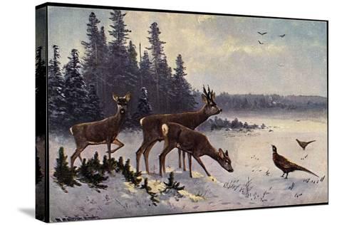 K?nstler M?ller, Rehe Im Wald, Winter, Fasane, V?gel--Stretched Canvas Print
