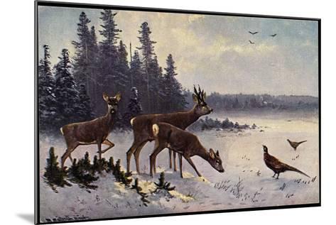 K?nstler M?ller, Rehe Im Wald, Winter, Fasane, V?gel--Mounted Giclee Print