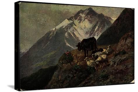 K?nstler Christian Mali, Hochgebirge, Kuh, L?mmer, Abhang--Stretched Canvas Print