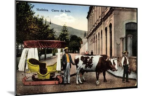 Madeira Portugal, Carro De Bois, Ochsenkarren Auf Schlitten--Mounted Giclee Print