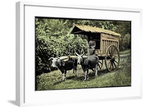Een Transportwagen Met Karbouwen, Glinding Genaamd, Ochsenkarren--Framed Art Print