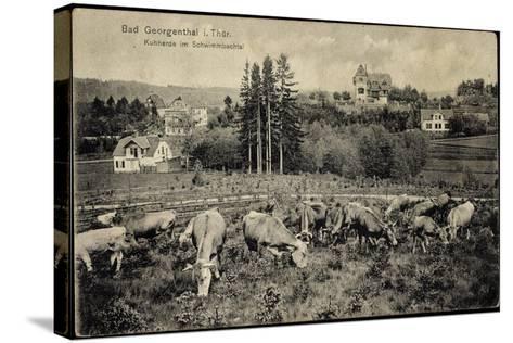 Georgenthal Thüringen, Kuhherde Im Schwimmbachtal, Berge--Stretched Canvas Print