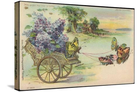 Haltgegendaslicht Litho Schmetterlinge, Blumenwagen, Kitsch, Meteor Drgm 88690--Stretched Canvas Print