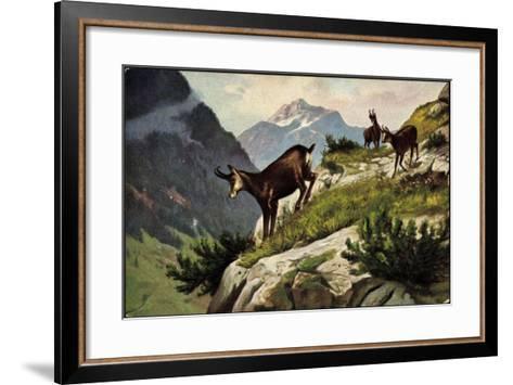 Künstler Bergziegen an Einem Abhang, Gebirge, Abgrund--Framed Art Print