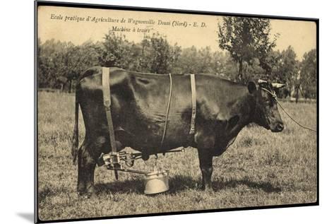 Ecole Pratique D'Agriculture De Wagnonville Douai, Nord, Machine a Traire--Mounted Giclee Print
