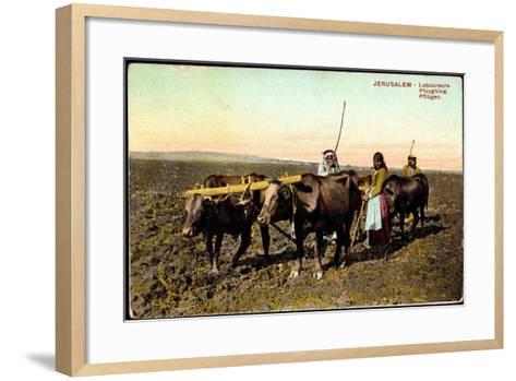 Jerusalem, Laboureurs, Ploughing, Pflügen, Landwirtschaft, Ochsenpflug--Framed Art Print