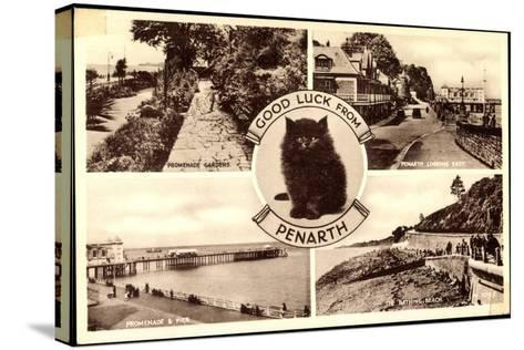 Penarth Wales, Promenade Gardens, the Bathing, Beach, Cat--Stretched Canvas Print