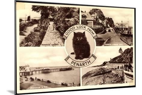 Penarth Wales, Promenade Gardens, the Bathing, Beach, Cat--Mounted Giclee Print