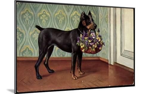 Dobermannwelpe Mit Blumenkorb Im Maul Vor Der T?r, Tapete Mit Verzierungen--Mounted Giclee Print