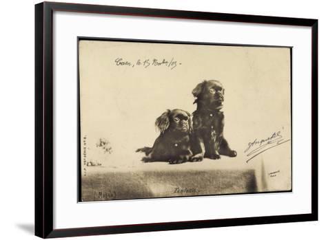 Portrait Von Zwei Hunden, Die Auf Einem Tisch Sitzen--Framed Art Print